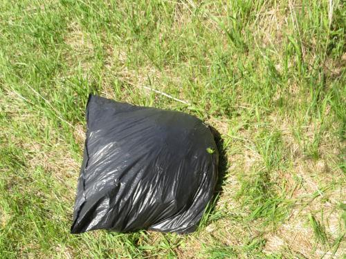 a trash bag of garlic mustard