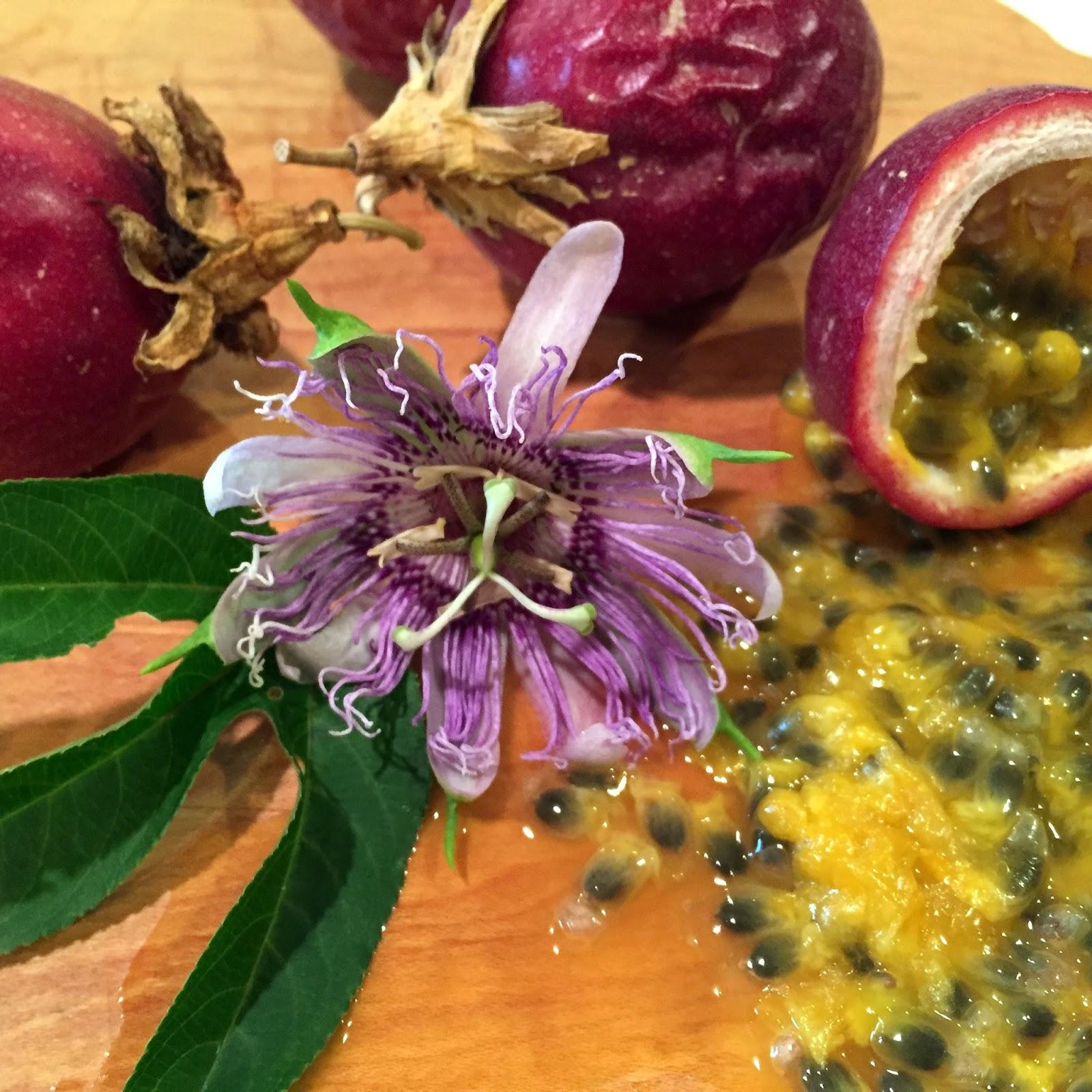 Rosemary s Sampler The Fruit of the Passion Flower