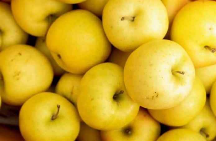 Elma kabuğu sarı meyveler
