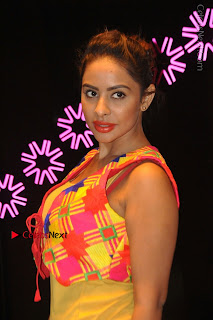 Telugu Actress Model Sri Reddy Latest Stills in Yellow Dress  0014.JPG