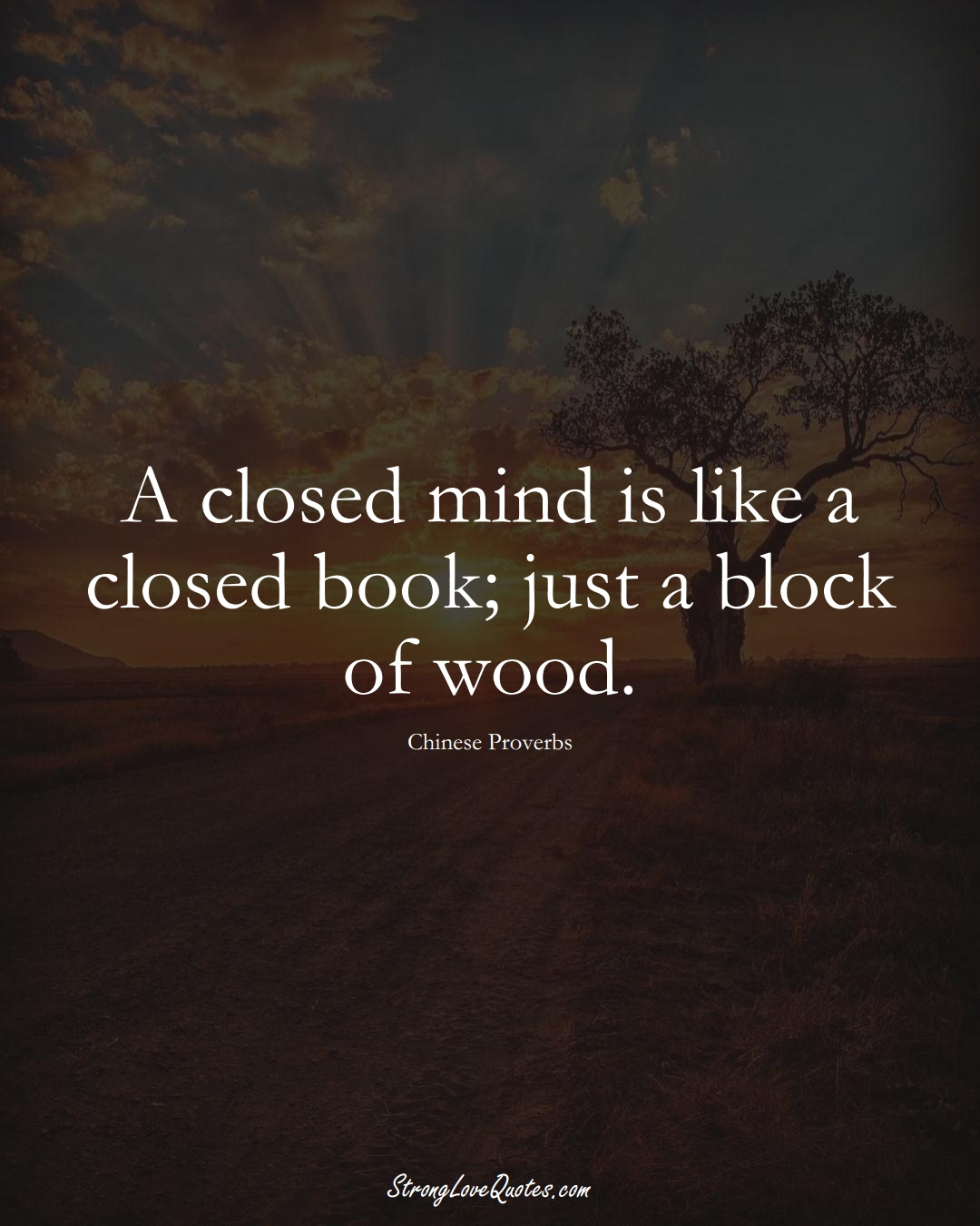 A closed mind is like a closed book; just a block of wood. (Chinese Sayings);  #AsianSayings