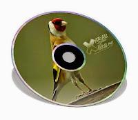 cd, mp3, chant, chardonneret, mixto, شريط, تلقين, فراخ, الحسون, المايسترو, هجين الحسون, ممتاز, صوت, تغريد