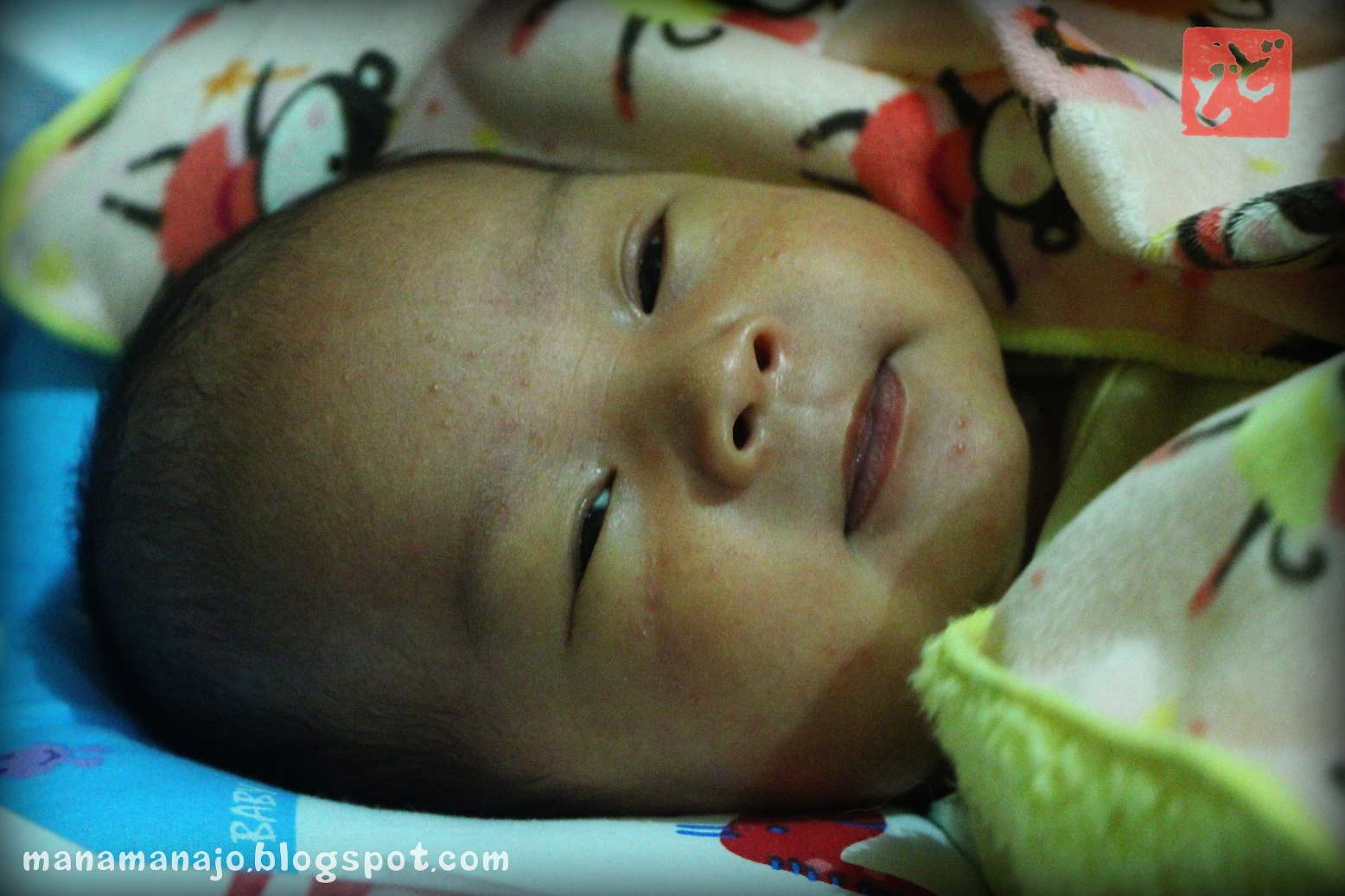 EXPelaut Punya Cerita 3 Minggu Babyapong