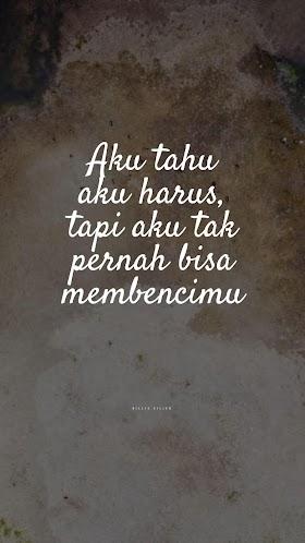 Quotes : Aku tahu aku harus, tapi aku tak pernah bisa membencimu