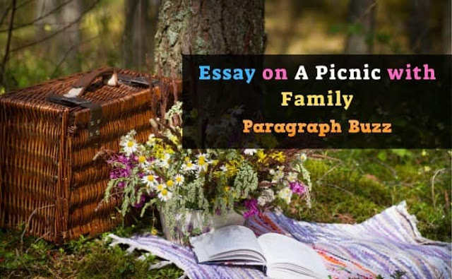 Essay on a Picnic with Family