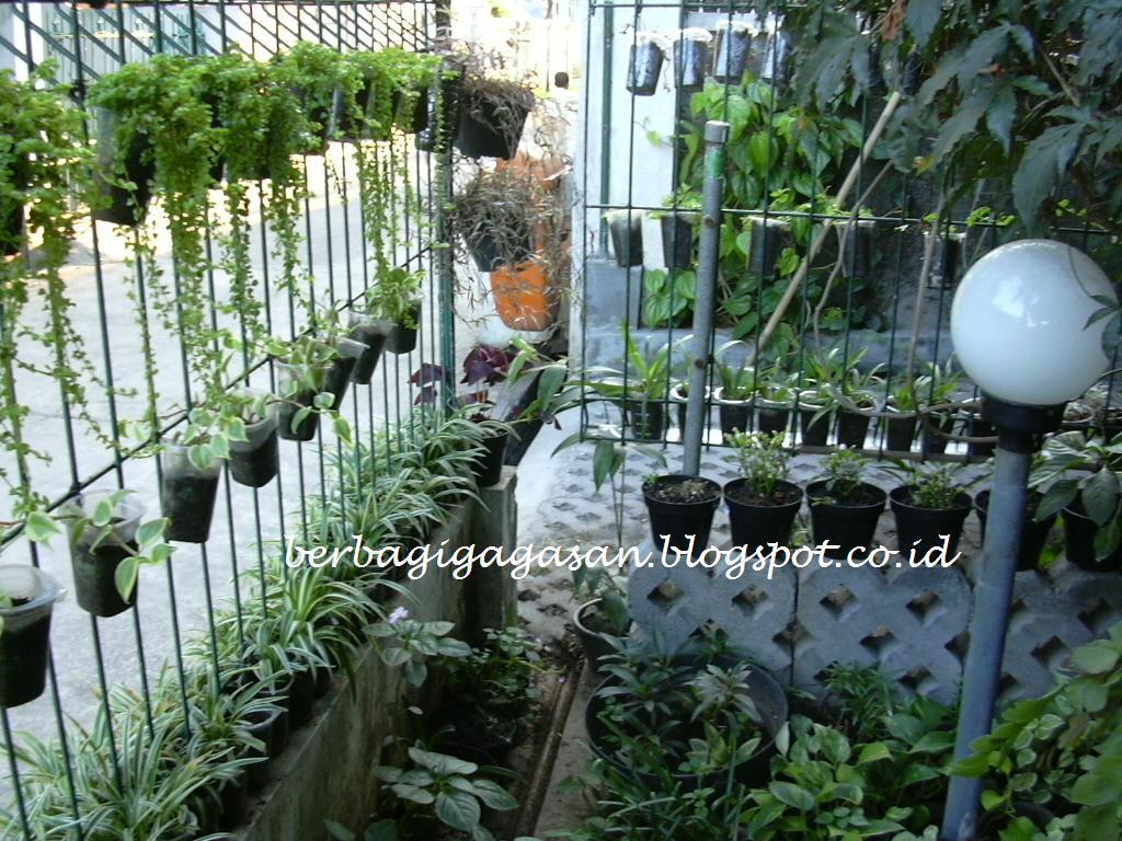 Menghias Rumah Kecil dengan Tanaman Hias Murah Meriah dan Pot Barang Bekas a6ea49f4da
