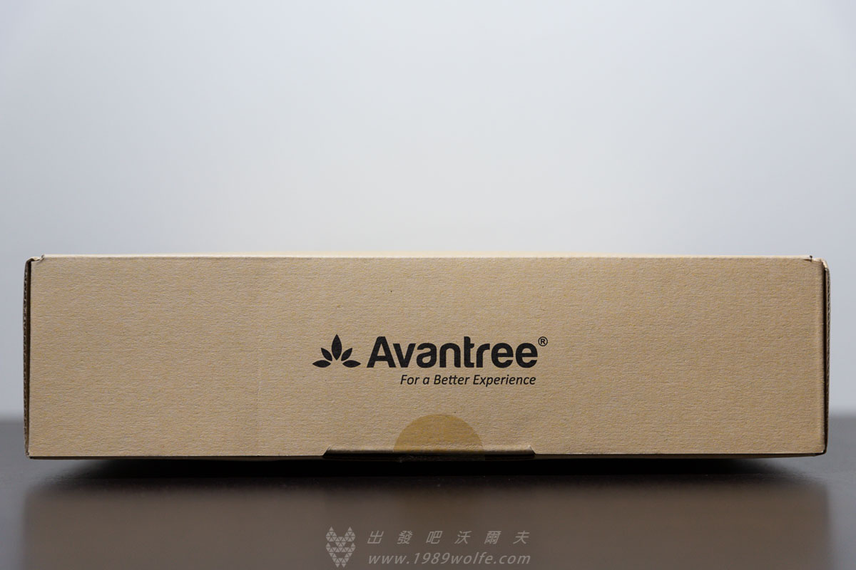 Avantree AS90P ANC 降噪藍牙耳機
