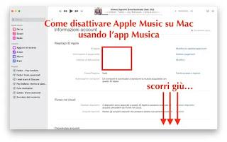 schermata account su app musica per mac
