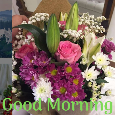 good morning flowers image download