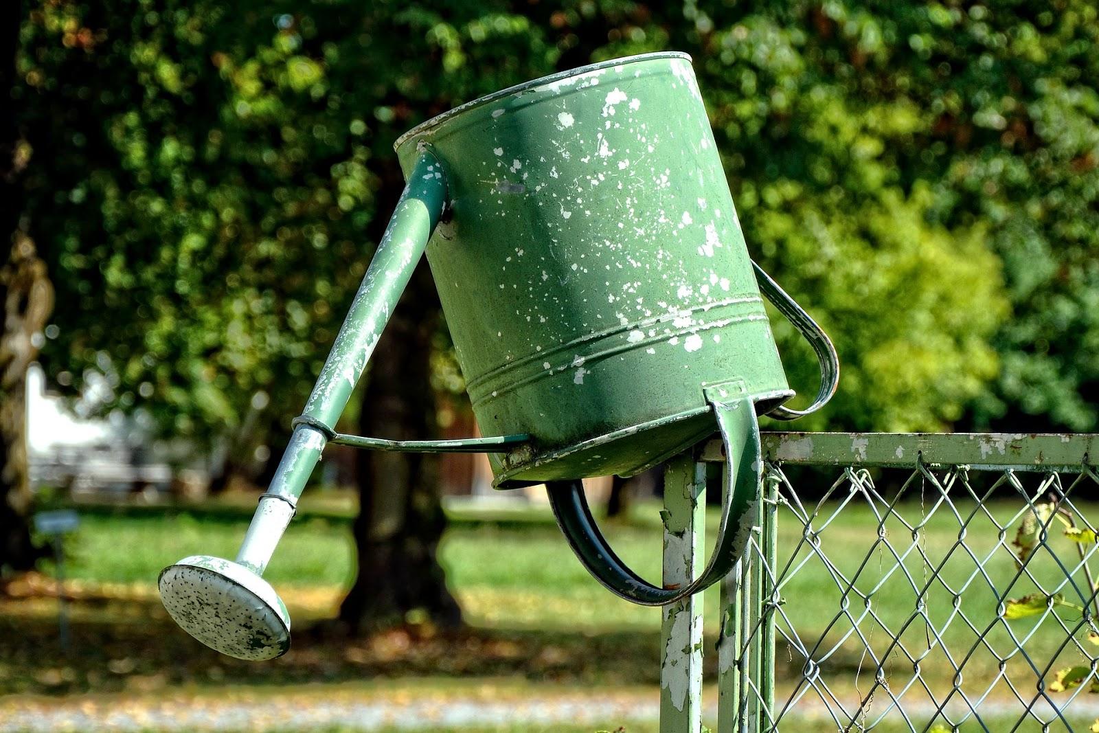 czym podlewać ogródek
