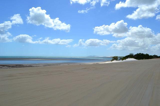 Brésil, Jericoacoara, buggy, hippocampe, dune, tatajuba, mangue seco