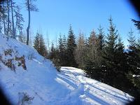 Schneeschuhwandern_auf_der_Gloesalm