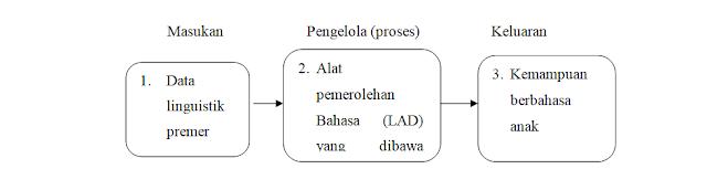 Karakteristik Pemerolehan Bahasa Pertama