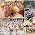 போரா மாநாடு... 10 சதவீதமானவர்கள் சொந்த நாடுகளுக்குத் திரும்பினர். மிகுதி  90 சதவீதமானவர்கள் இலங்கையில் சுற்றுலா நடவடிக்கையில் ஈடுபட ஆரம்பித்தனர்.