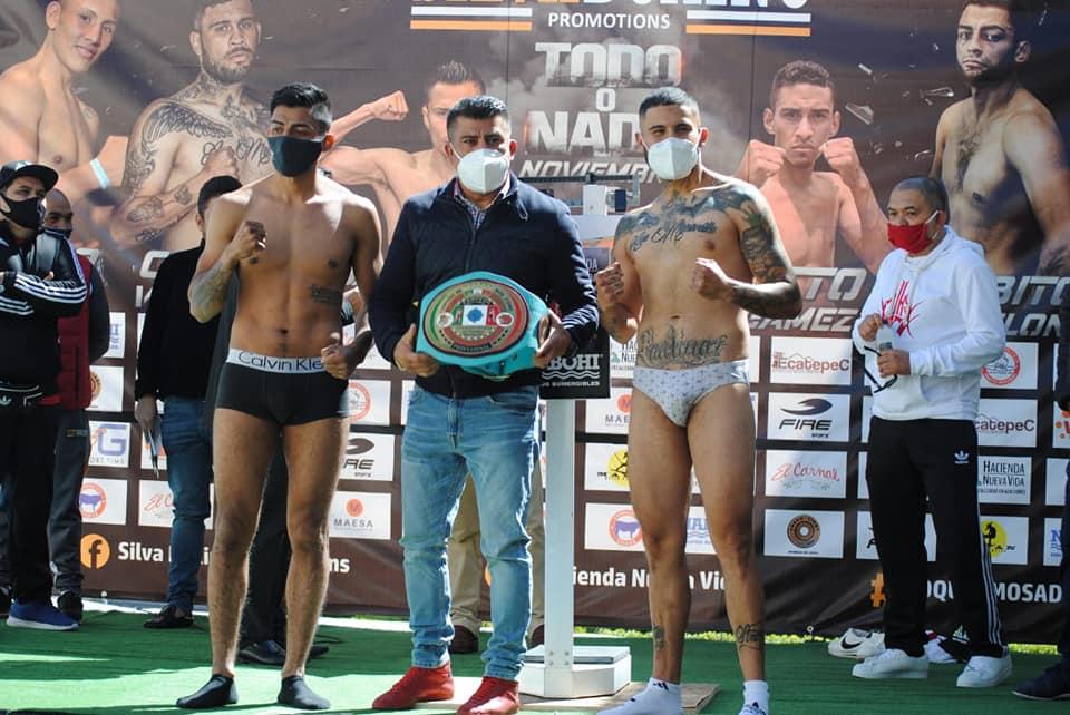 paquete de boxeadores