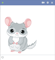 Chinchilla Facebook Sticker