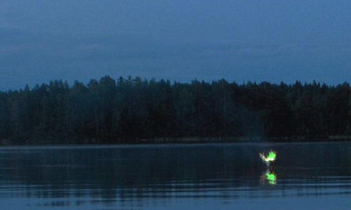 Bengal Swamp (Aleya ghost lights)