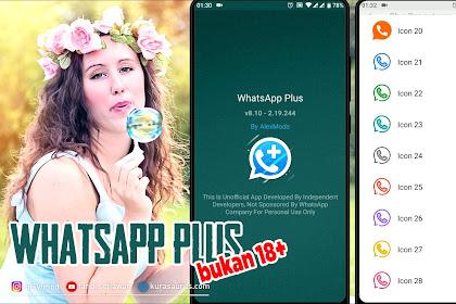 WHATSAPP TERBARU BULAN NOVEMBER  Whatsapp Plus Versi 8.10