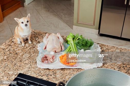 La bonne façon de changer le régime alimentaire de votre chien