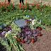 На Оболоні встановлять пам'ятний знак загиблим Героям Революції Гідності