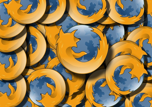 Update Firefox now, on the grounds that the U.S Department of Homeland Security is instructing you to update right now.