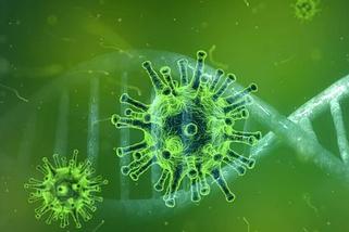 Mengenal Virus Corona dan Bagaimana Cara Pencegahannya