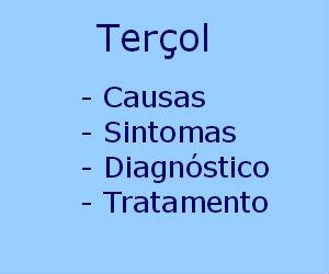 Terçol causas sintomas diagnóstico tratamento