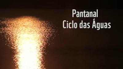 Conheça o Ciclo das Águas do Pantanal