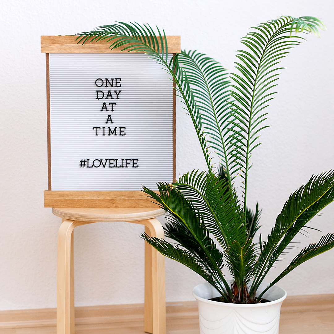 "Letterboard saying ""One Day At A Time"" #lovelife DCVW American Crafts"