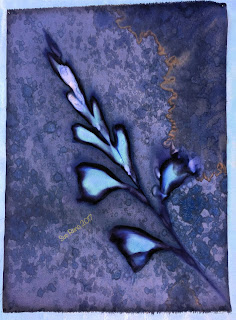 Wet Cyanotype_Sue Reno_Image 176