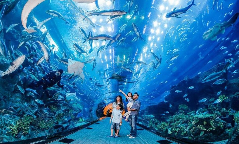 Aquatic zoo in Africa | The Palmeraie of Marrakesh city ...