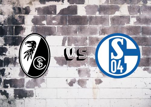 Freiburg vs Schalke 04  Resumen
