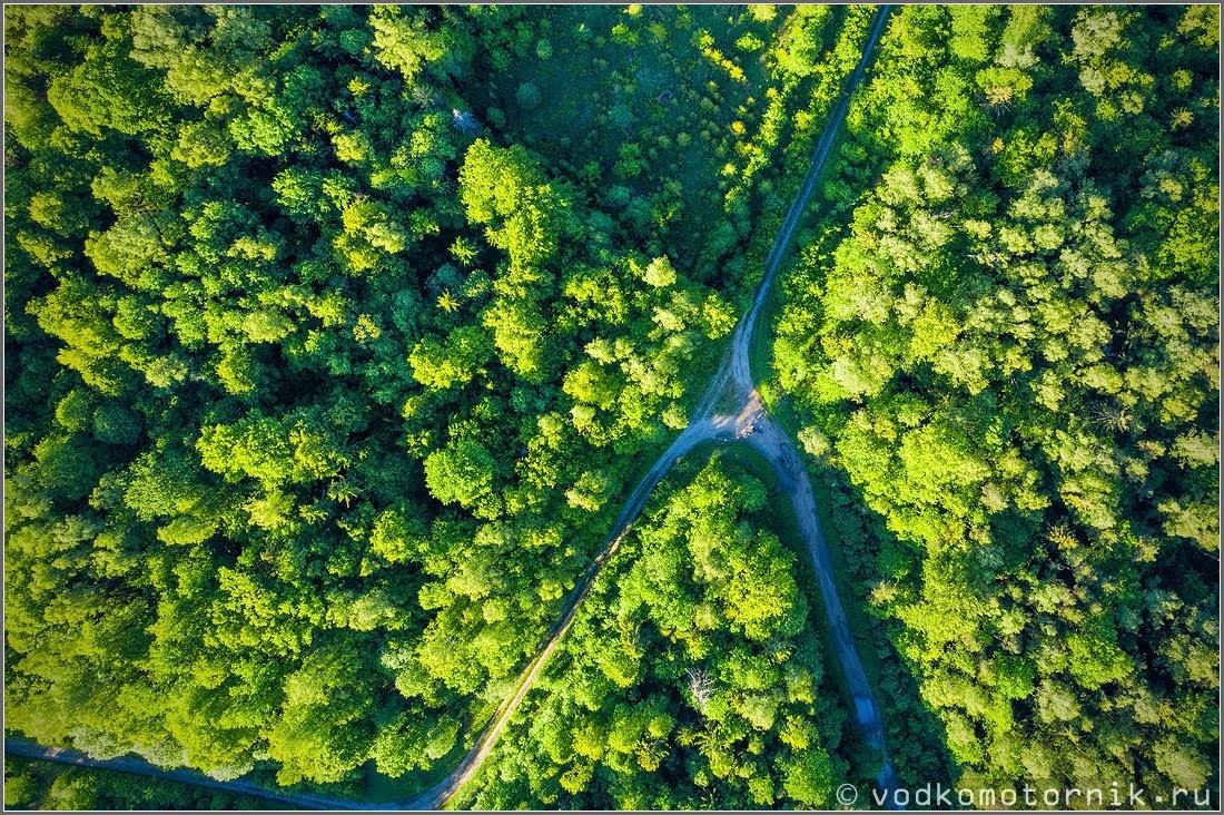 Перекресток лесных велодорог