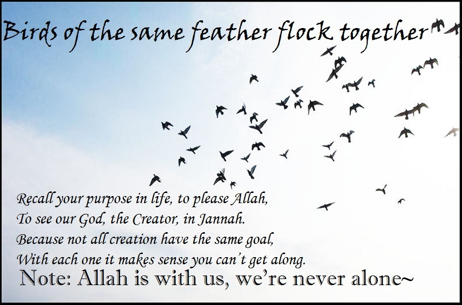 purpose of islam in relationship with allah
