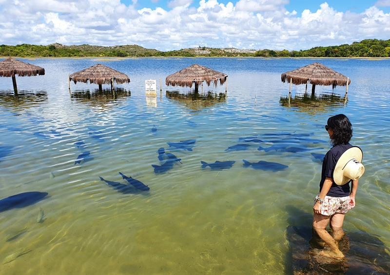 Lagoa dos Tambaquis