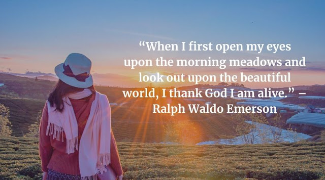 good morning quotes in english without images
