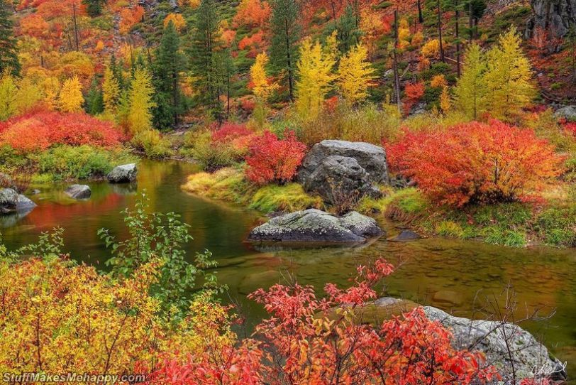 Fine Art Nature Photography to Visual Love Letters to Earth by Aaron Reed
