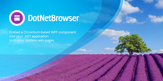 DotNetBrowser 1.x is launched!