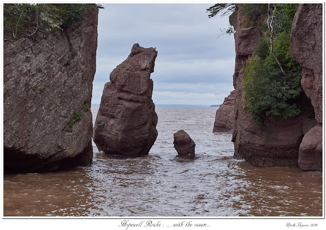 Hopewell Rocks: ... with the ocean...
