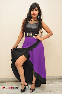 Telugu Actress Rachana Smith Stills at Money is Honey Audio Release  0099.jpg