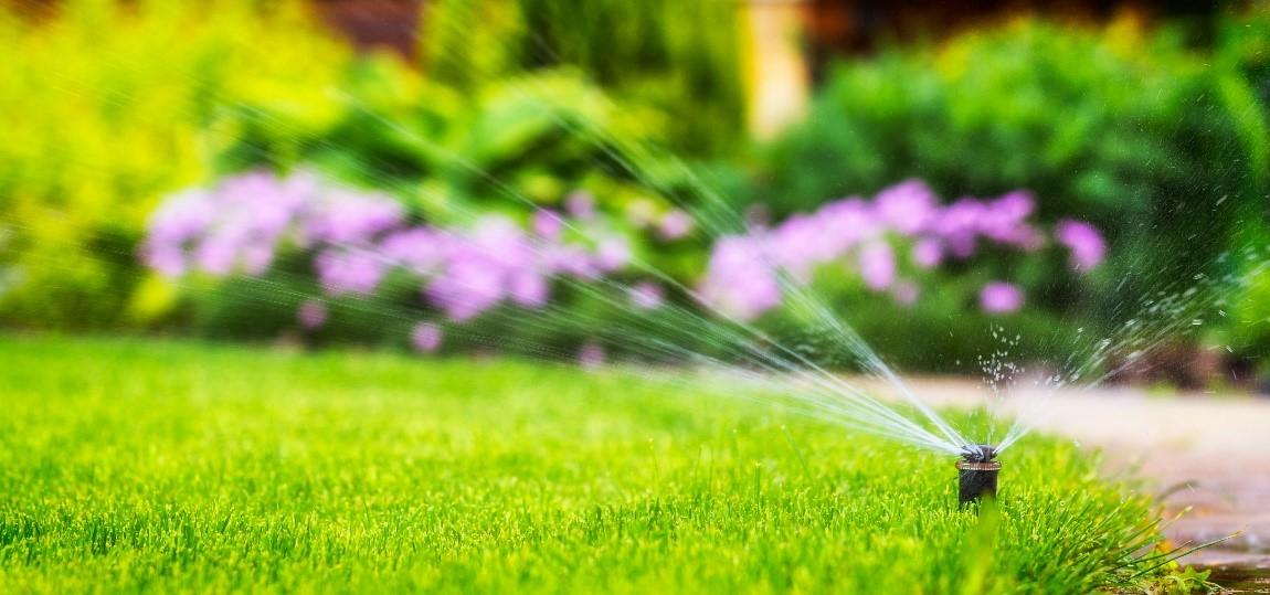 7 conseils pour un gazon bien vert toutel'année
