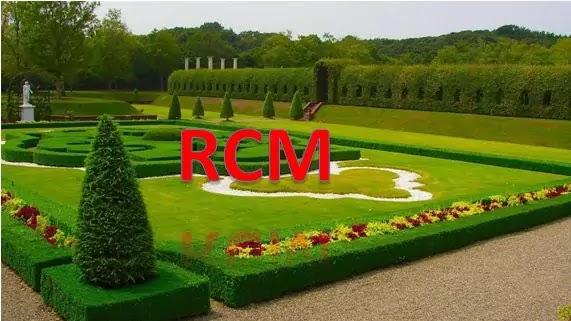 What is RCM Business?:आर.सी एम. बिजनस क्या है?