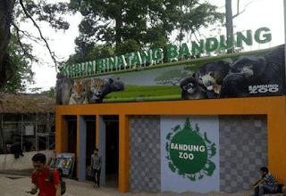 Kebun-binatang-Bandung