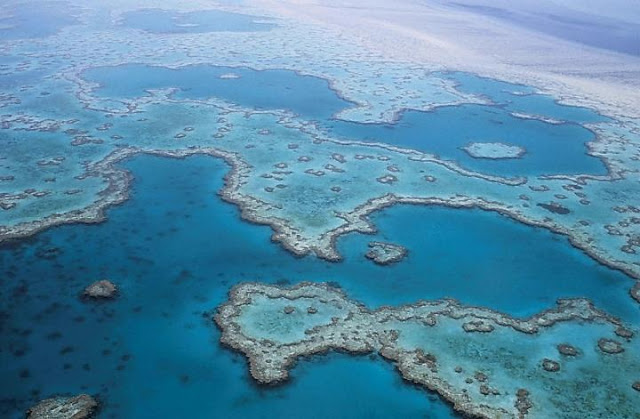 Major study reveals Great Barrier Reef's 30,000-year fight for survival
