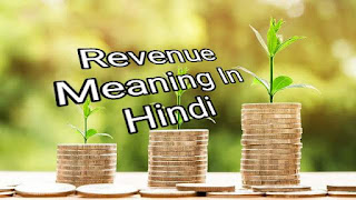 Revenue Meaning In Hindi