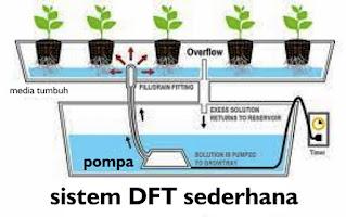 Deep Flow Technique (DFT)