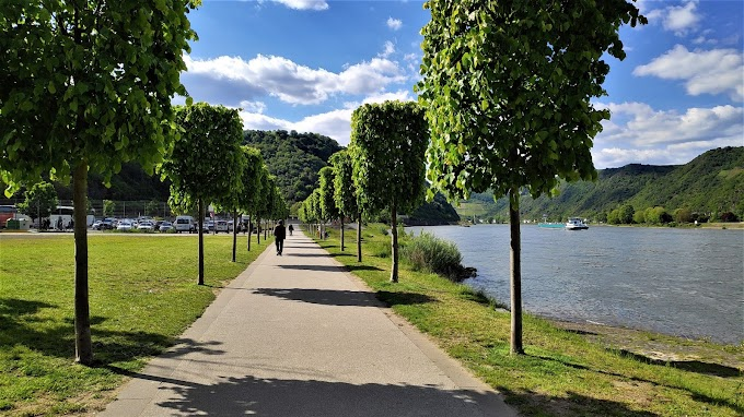 Walk Along River Rhine