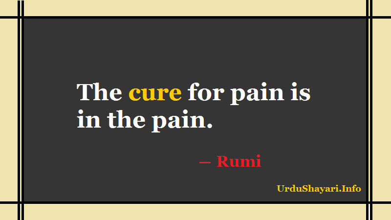 Rumi Short Quotes, Rumi on Pain- the cure for pain is in the pain