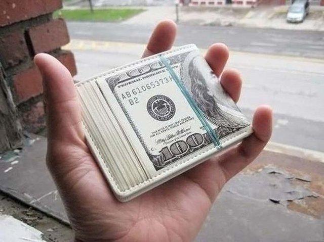Dollar Bill Wallet