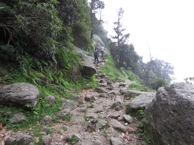 triund trekking